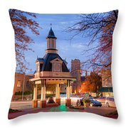 Beaver Pa 4 Throw Pillow by Emmanuel Panagiotakis