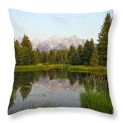 Beaver Pond At Schwabacher Landing Throw Pillow