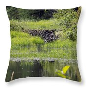Beaver Pond Scene Throw Pillow