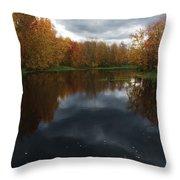 Beaver River Dramatic Throw Pillow