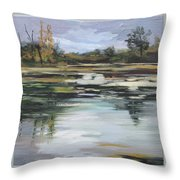 Beaverdams - Niagara Falls Autumn Throw Pillow