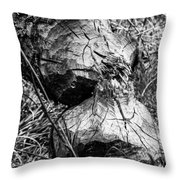 Beavers Were Here Throw Pillow