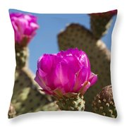 Beavertail Cactus Blossom 2 Throw Pillow by Kelley King