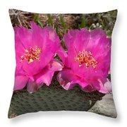 Beavertail Cactus Flowers Throw Pillow