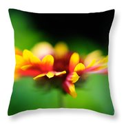 Beckoning  Throw Pillow