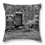 Becoming A Part Of The Landscape Black And White Throw Pillow