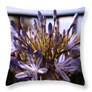 Becoming Beautiful Throw Pillow