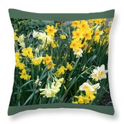 Bed Of Daffodils Throw Pillow