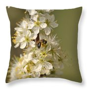 Bee And Blossoms Throw Pillow