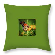 Bee And Butterfly Throw Pillow