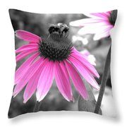 Bee And Cone Flower Throw Pillow