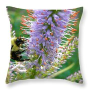 Bee And Its Lavender Delight Throw Pillow