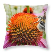 Bee And Pink Flower Throw Pillow