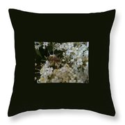 Bee And Small White Blossoms 2 Throw Pillow