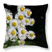 Bee And Wildflower  Throw Pillow