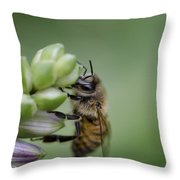 Busy Bee Throw Pillow by Andrea Silies