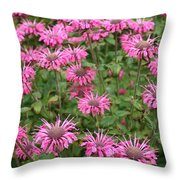 Bee Balm Beauties Throw Pillow