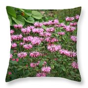 Bee Balm Garden Throw Pillow