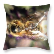 Bee Bee Throw Pillow