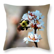 Bee Blossom Throw Pillow