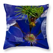 Bee Blues Throw Pillow