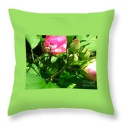 Bee Careful Throw Pillow