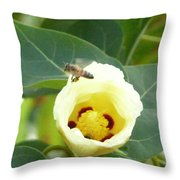 Bee Chowtime Throw Pillow