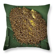 Bee Cluster Throw Pillow