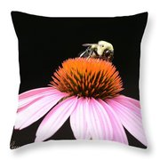Bee Coneflower Throw Pillow