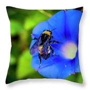 Bee Covered With Pollen On Morning Glory 3521t Throw Pillow