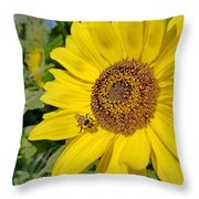 Bee-dazzled Throw Pillow