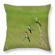 Bee Eaters In The Sun Throw Pillow