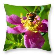 Bee Here Now Throw Pillow
