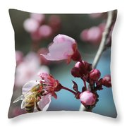 Bee In A Blossom Throw Pillow