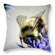 Bee In A Bubble Throw Pillow