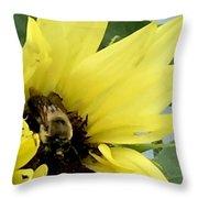 Bee In Sunflower Throw Pillow