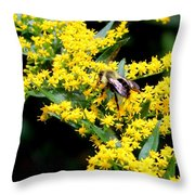 Bee In The Rawweed Throw Pillow