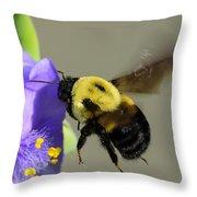 Bee Landing On Spiderwort Flower Throw Pillow