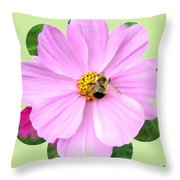 Bee-line 1 Throw Pillow