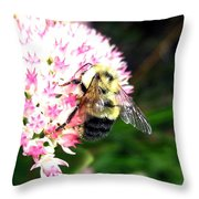 Bee-line 2 Throw Pillow