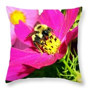 Bee-line 3 Throw Pillow