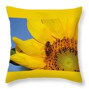 Bee My Sunshine Throw Pillow