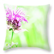Bee Nectar Throw Pillow