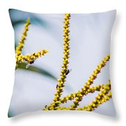 Bee On A Branch I Throw Pillow