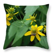 Bee On A Flower Throw Pillow