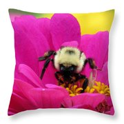 Bee On A Hot Pink Zinnia Throw Pillow