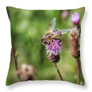 Bee On A Thistle Flower Throw Pillow