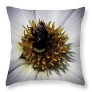 No Paid Holiday Throw Pillow