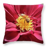 Bee On Beautiful Dahlia Throw Pillow