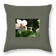 Bee On Blackberry Blossom Throw Pillow